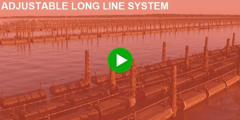 Adjustable Long Line Oyster Farming